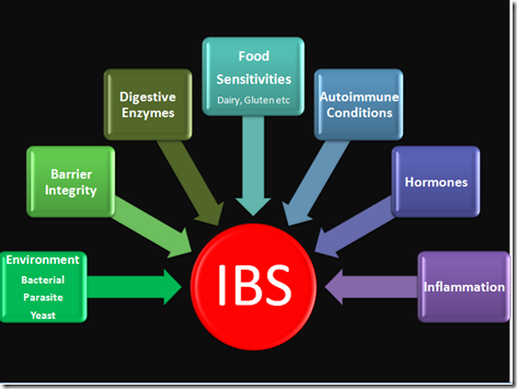 ibs causes