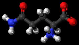 bcaa mollecule