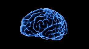 Dopamine: What You Didn't Know About the Brain's Natural Drug