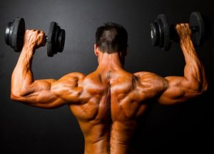 how to cause muscle confusion